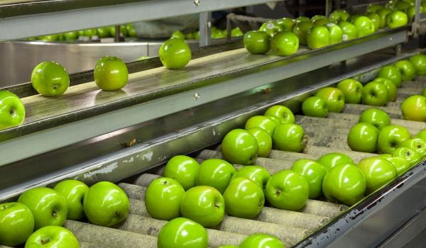 sector-2b-agroalimentario-1